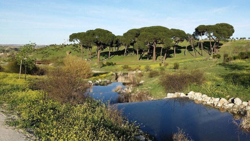 Zonas verdes de Madrid, Parque de Valdebebas, anteriormente Parque de Felipe VI