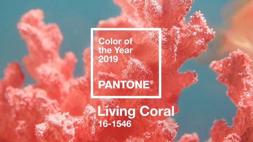 Living coral o coral vívido