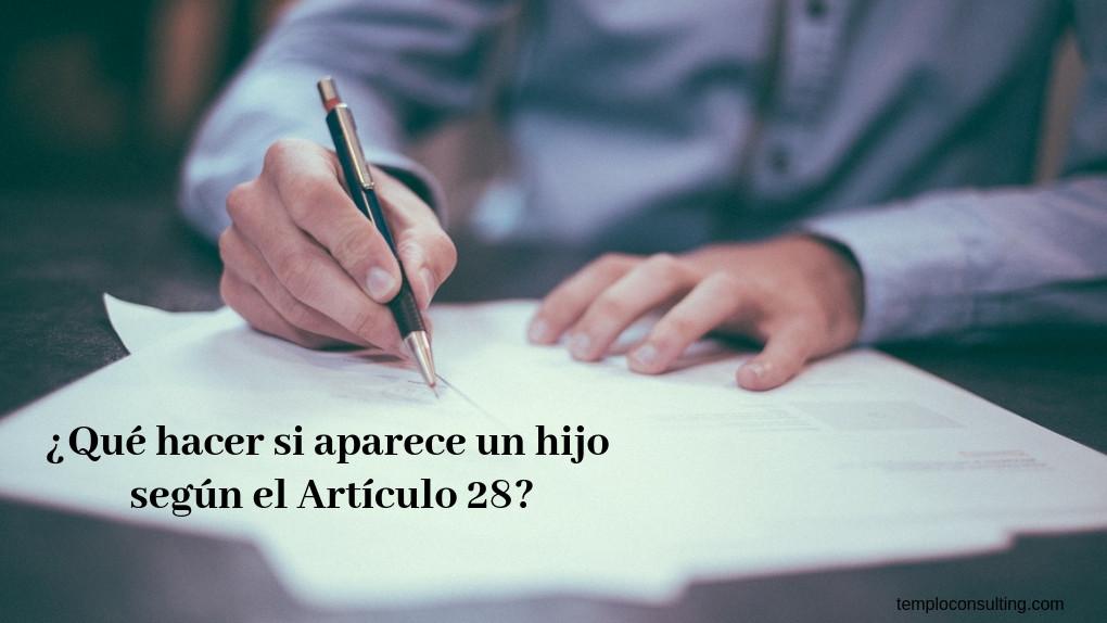 ejemplo articulo 28