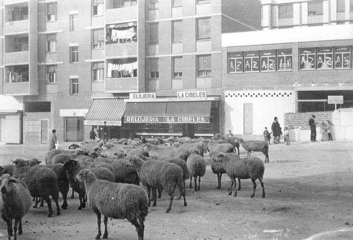 Imágenes del Madrid antiguo, La Elipa