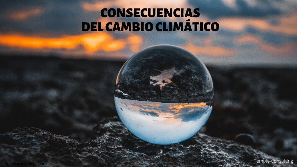 Templo Consulting. Cambio climatico